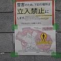 20140224_Tokyo_Simba_08.jpg
