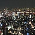 20140220_Tokyo_Disney_SkyTree_21.jpg