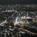20140220_Tokyo_Disney_SkyTree_23.jpg