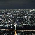 20140220_Tokyo_Disney_SkyTree_26.jpg
