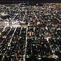 20140220_Tokyo_Disney_SkyTree_29.jpg
