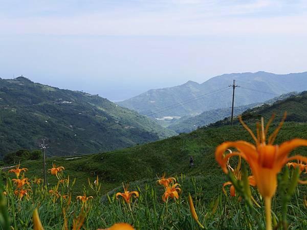 20140801_Taitung_Lumix_177.jpg