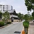 20140811_Kyushu_Simba_015.jpg