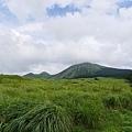 20140811_Kyushu_Simba_025.jpg
