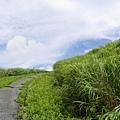 20140811_Kyushu_Simba_031.jpg