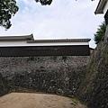 20140812_Kyushu_Simba_012.jpg