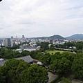20140812_Kyushu_Simba_032.jpg