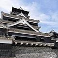20140812_Kyushu_Simba_034.jpg