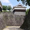 20140812_Kyushu_Simba_044.jpg