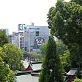 20140812_Kyushu_Simba_045.jpg