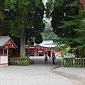 20140812_Kyushu_Simba_062.jpg