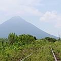 20140813_Kyushu_Simba_026.jpg