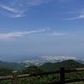 20140813_Kyushu_Simba_047.jpg