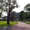 20140813_Kyushu_Simba_057.jpg