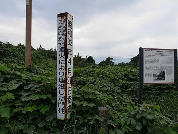 20140813_Kyushu_Simba_132.jpg