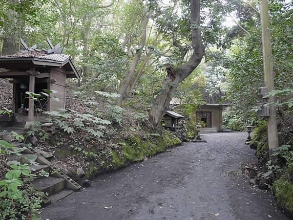 20140813_Kyushu_Simba_136.jpg