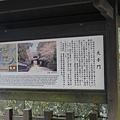 20140814_Kyushu_Simba_010.jpg