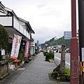 20140814_Kyushu_Simba_030.jpg