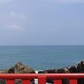 20140814_Kyushu_Simba_076.jpg