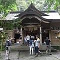 20140815_Kyushu_Simba_13.jpg
