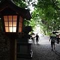 20140815_Kyushu_Simba_22.jpg
