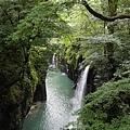 20140815_Kyushu_Simba_25.jpg
