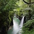 20140815_Kyushu_Simba_27.jpg