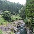 20140815_Kyushu_Simba_51.jpg