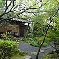 20140815_Kyushu_Simba_58.jpg