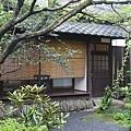 20140815_Kyushu_Simba_69.jpg