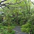 20140815_Kyushu_Simba_70.jpg