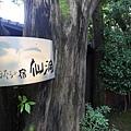 20140815_Kyushu_Simba_79.jpg