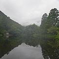 20140816_Kyushu_Simba_01.jpg