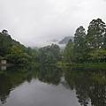 20140816_Kyushu_Simba_05.jpg
