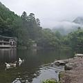 20140816_Kyushu_Simba_07.jpg