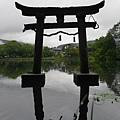 20140816_Kyushu_Simba_20.jpg