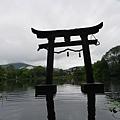 20140816_Kyushu_Simba_22.jpg