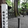 20140816_Kyushu_Simba_25.jpg