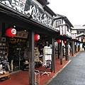 20140816_Kyushu_Simba_48.jpg