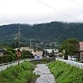 20140816_Kyushu_Simba_50.jpg