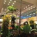 20141020_Singapore_iPhone_055.jpg