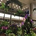 20141020_Singapore_iPhone_056.jpg