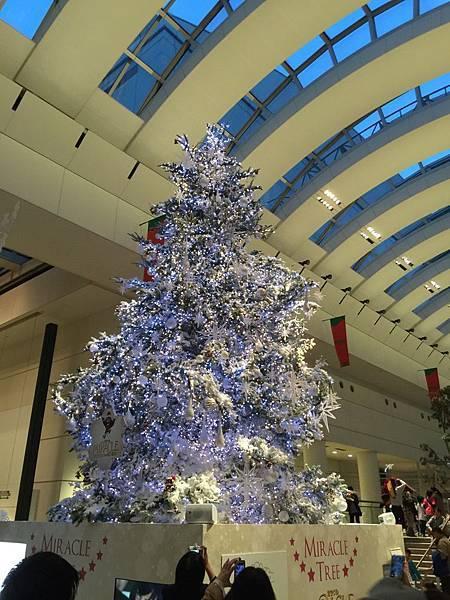 20141120_Tokyo_iPhone_557.jpg