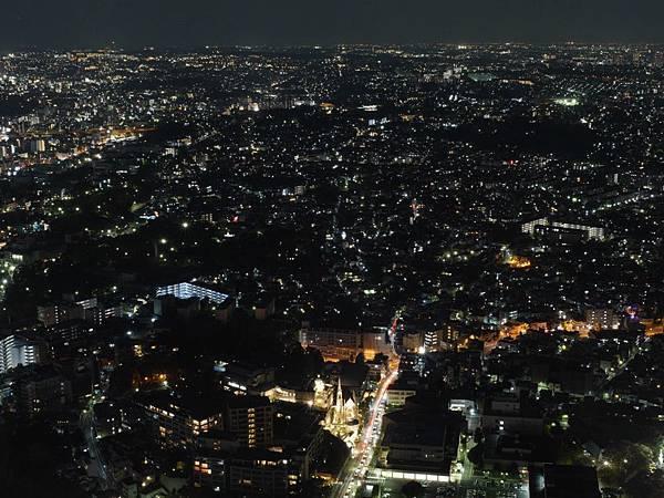 20141120_Tokyo_Lumix_338.jpg