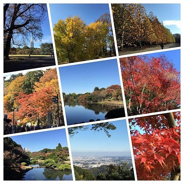 20141120_Tokyo_Final_2.jpg