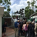 20150526_iPhone_Roland_Garros_052.jpg