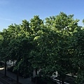 20150527_iPhone_Reims_Champaign_008.jpg