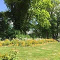 20150527_iPhone_Reims_Champaign_060.jpg