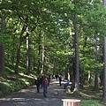 20150605_Wicklow_Park_078.jpg