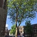 20150521_iPhone_Utrecht_18.jpg